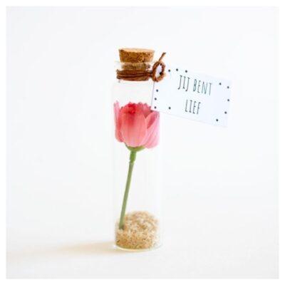 Bloem in een flesje - Brievenbuspost - Cadeautje - Maak het leuker
